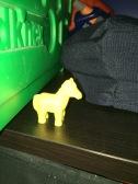 Horse Roundup!