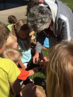 Looking at potting soil